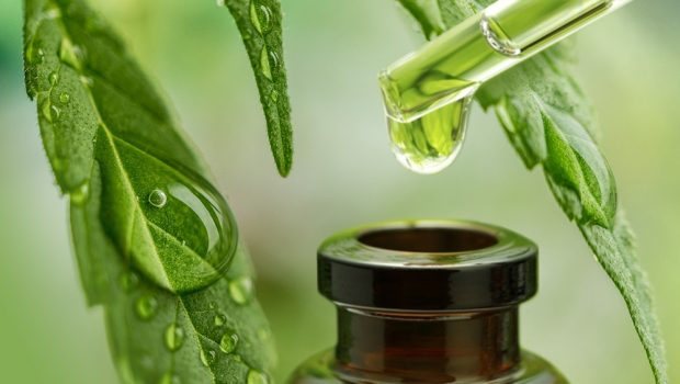 How Hemp Oil Used In Organic Products