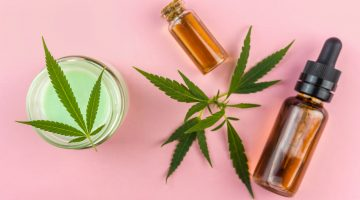 Top CBD Products In 2020